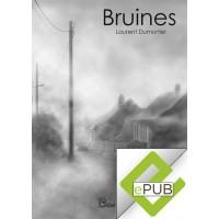 E-BOOK  Bruines
